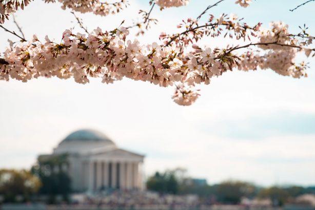 Washington D.C. Metro Area Events